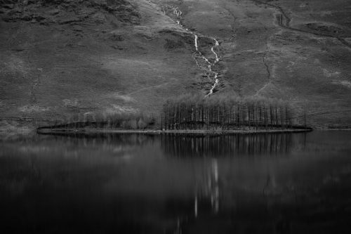 Lake District Buttermere-Trees-Black-and-White-Print