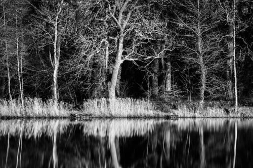 Scottish Loch Reflections black and white featured image