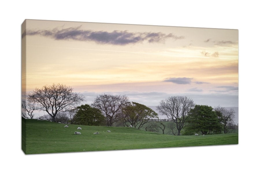 Dumfries and Galloway Fields Sunrise Canvas Print