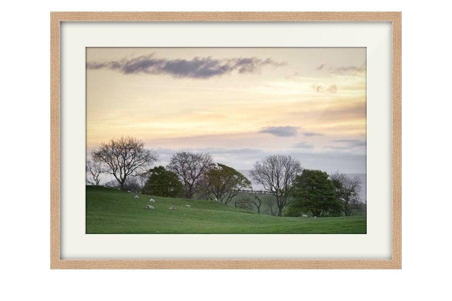 Dumfries and Galloway Fields Sunrise Oak Framed Print
