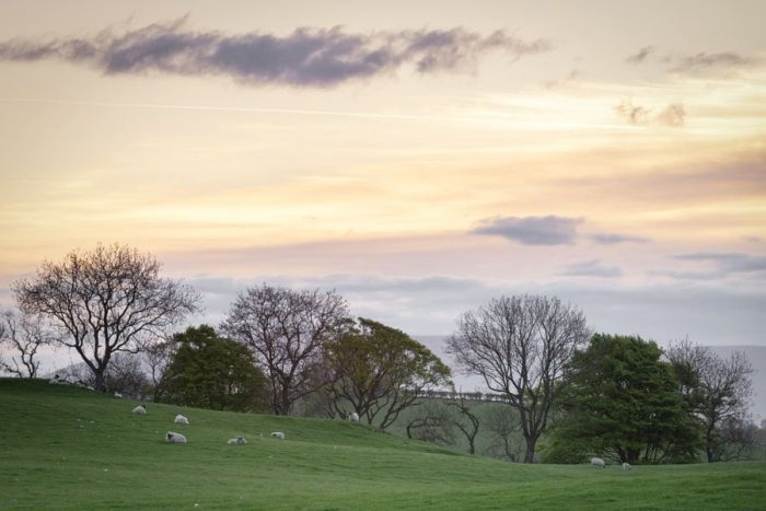 Dumfries and Galloway Fields Sunrise Photography Print