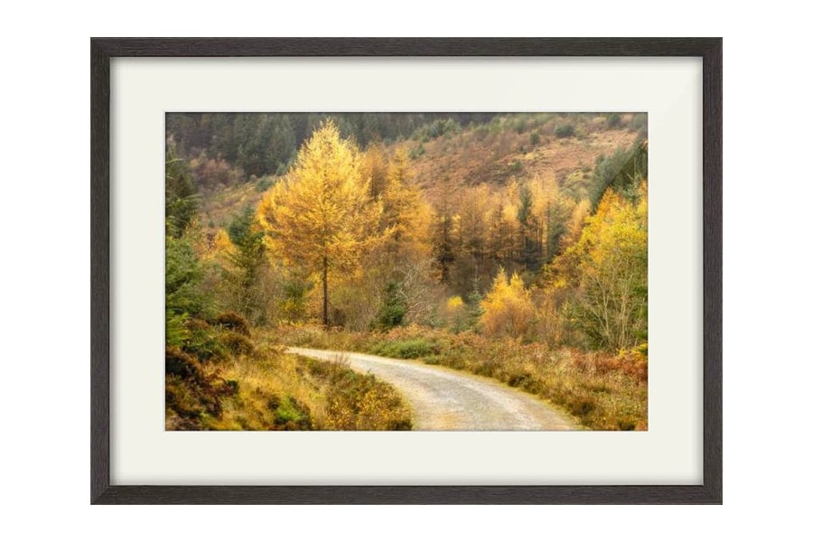 Autumn on Arran Black framed print