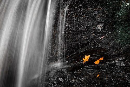 Wood of Cree Waterfall