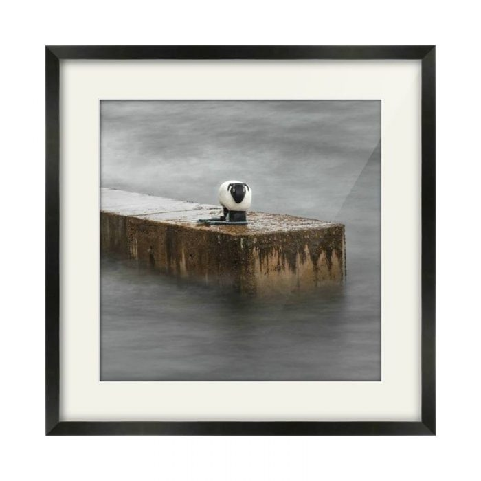 Corrie Sheep Arran Black Framed Photography Print