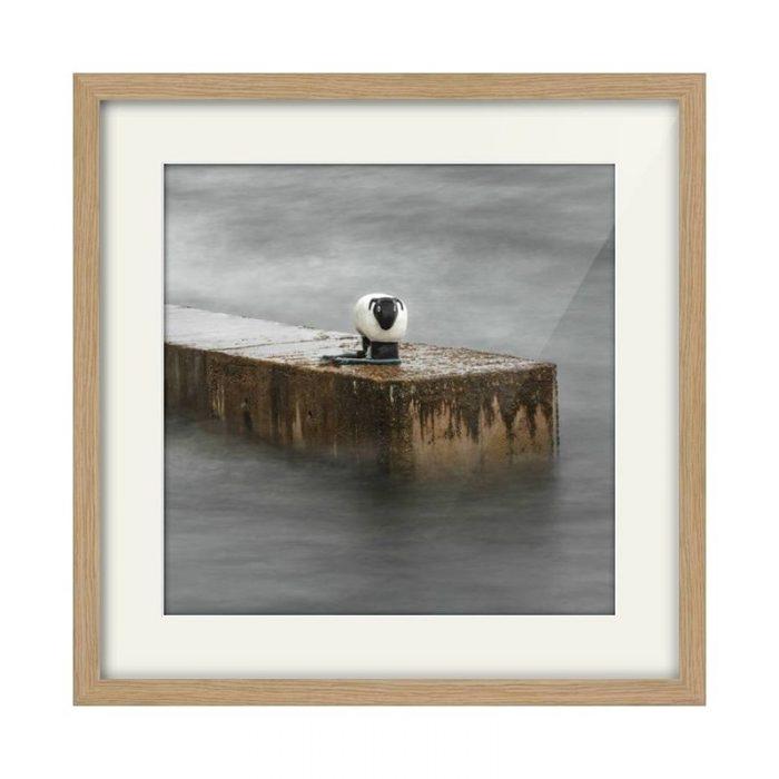 Corrie Sheep Arran Oak Framed Photography Print