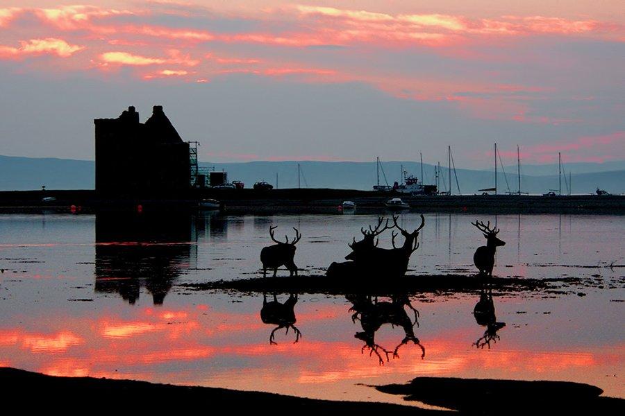Lochranza Castle CJ Smith Photography Blog Image